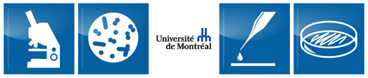 Stérilisation Université de Montréal asepsie asepsis orthodontistes lemay