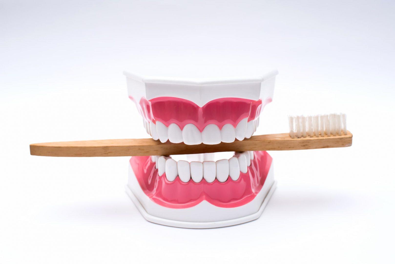 Brosse à dents pour les soins dentaires